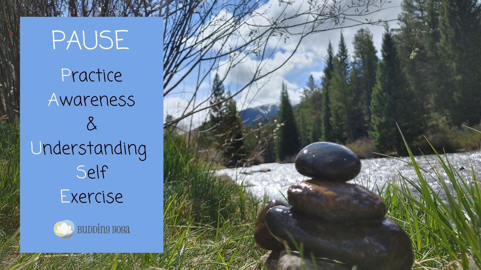 Practice Awareness & Understanding Self Exercise (2)